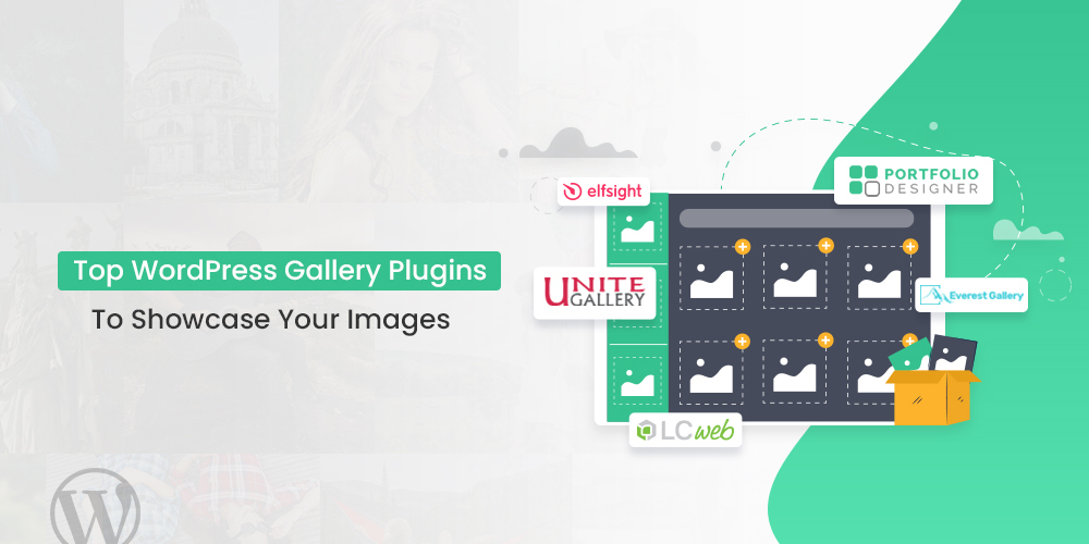 Top WordPress Gallery Plugins To Showcase Your Images