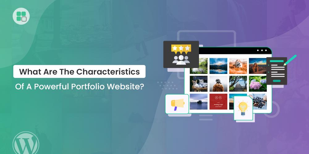 Characteristics Of Portfolio Website